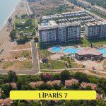 Liparis 7