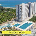 Liparis Marina